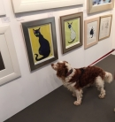 Rufus - a very obvious admirer of Terry's work at the Hampstead Affordable Art Fair 2016.