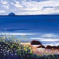 Summer, Ailsa Craig