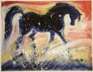 Arabian Starlight