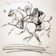 Polo Sketch I